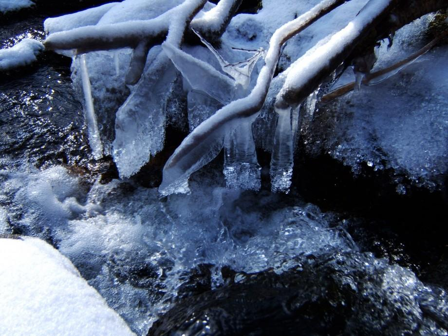 Ice formations in the brook