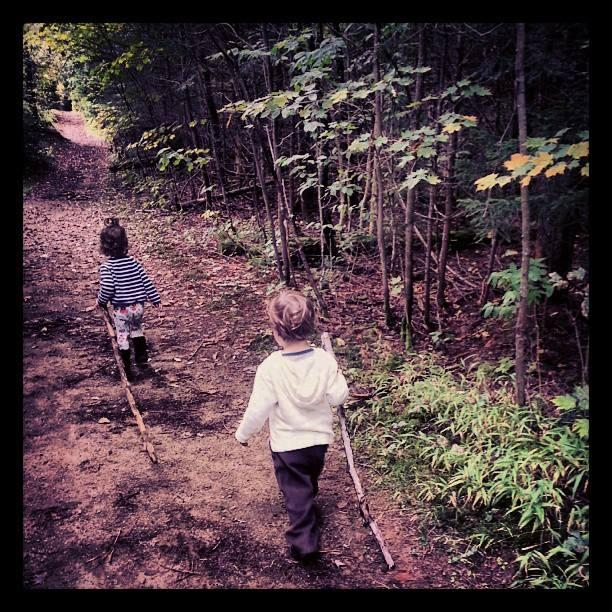 Hiking toddlers