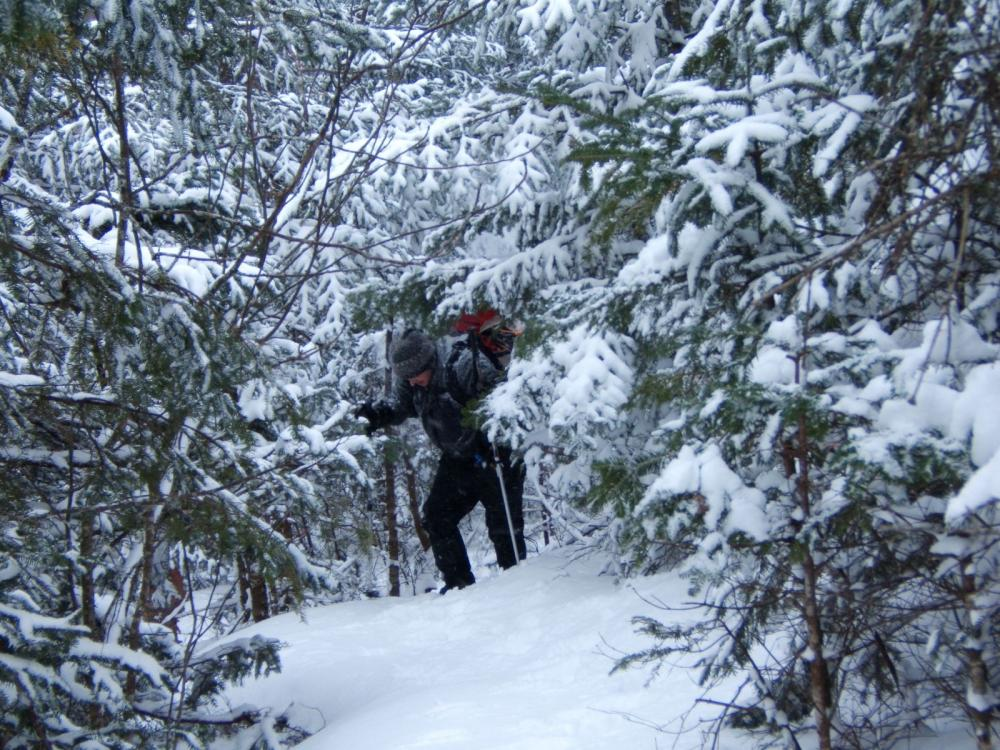 Snowshoeing up the Fire Warden Trail