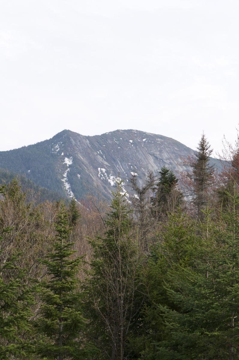 The view of Gothics from Johns Brook Lodge