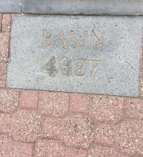 46er plaque for Basin Mountain