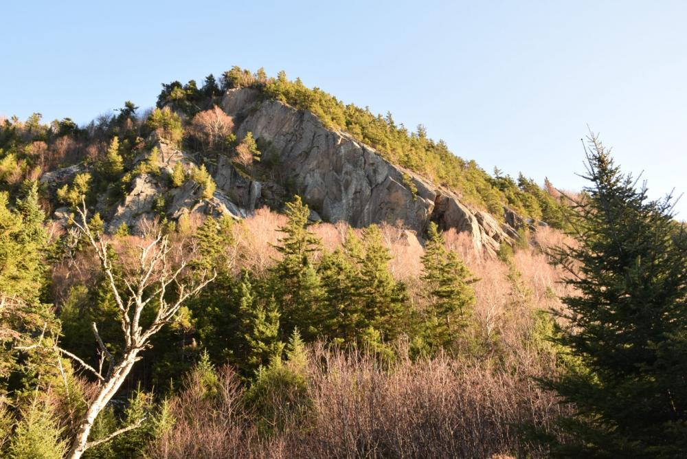 Spectacular cliffs rise from the forest along Old Mountain Road.