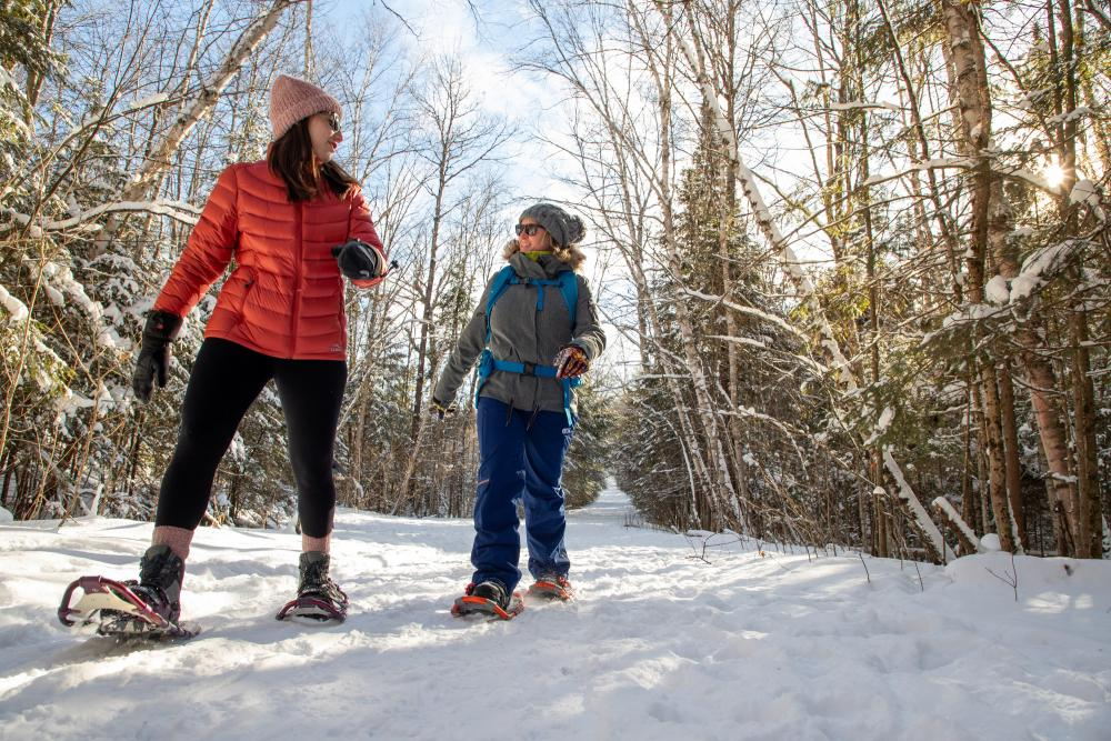 Two women snowshoe on a sunny, snowy wooded trail.