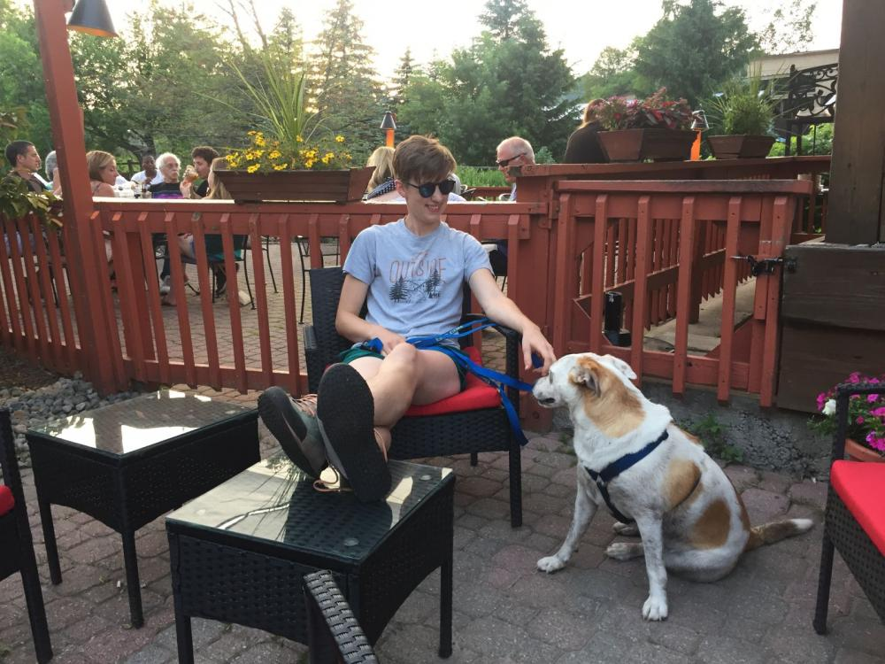 Outdoor dining with canine friends