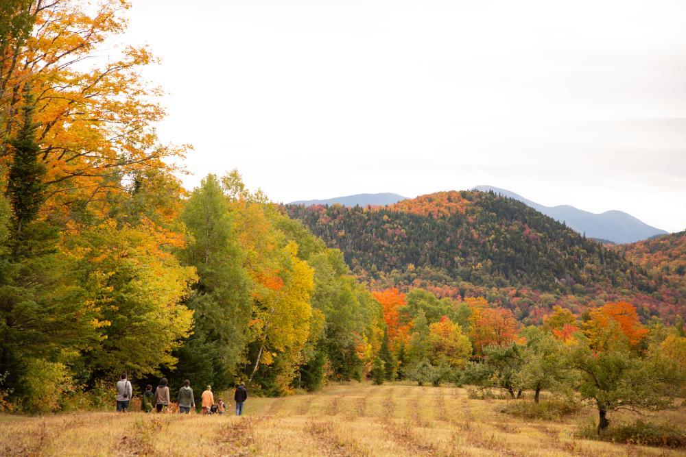 A group of people walk on a field amid mountain fall foliage.