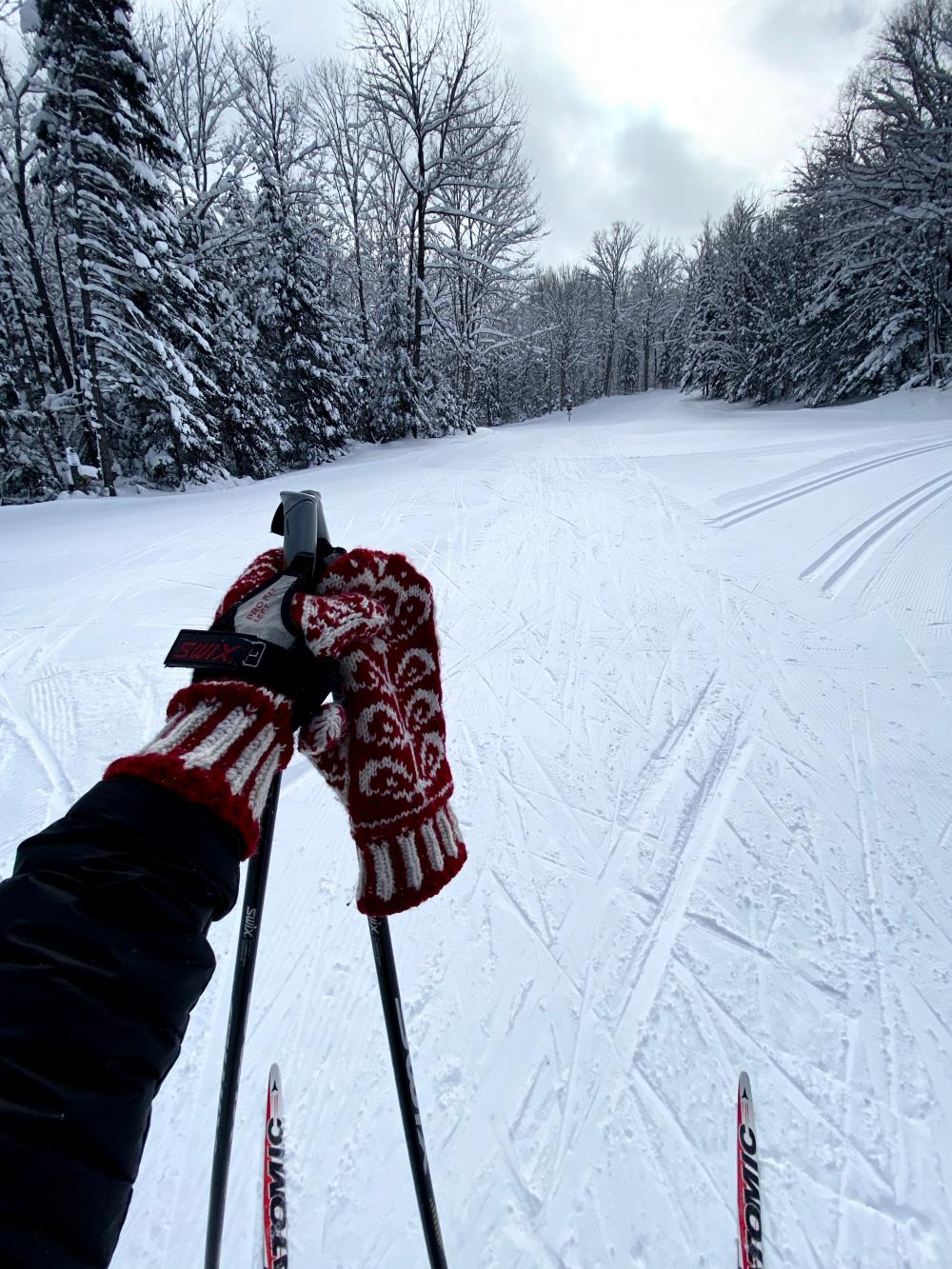 View of cross-country ski trail in winter.