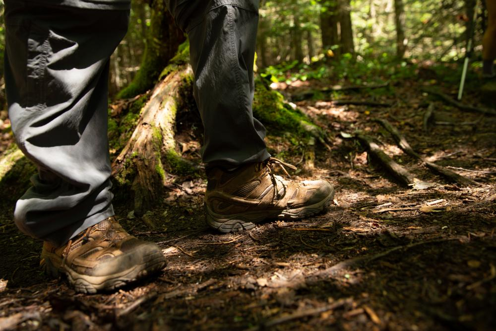 Hiking boots in the Adirondack forest.