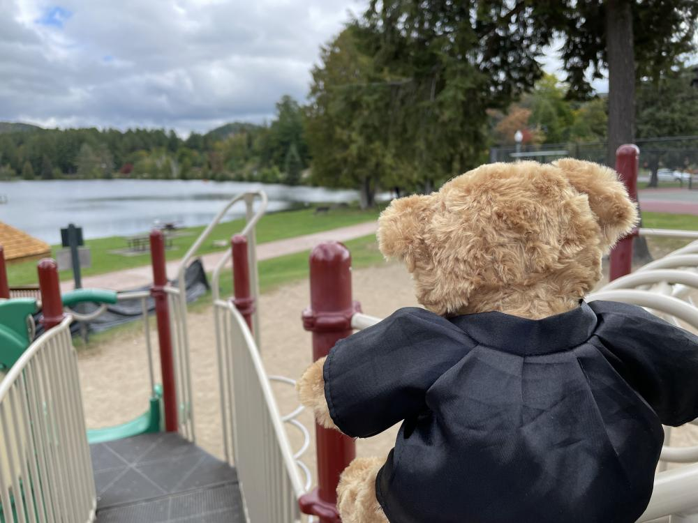 Close up of a teddy bear's back perched on the top of a slide on a playground.