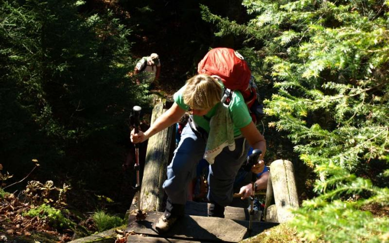 Trail builders have built in some help for this challenging traverse.