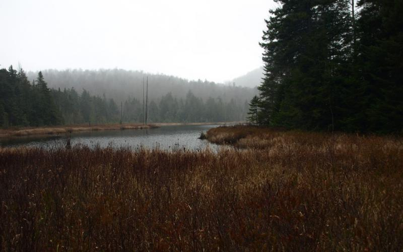 These wetlands support many kinds of birds and gives a view of the Whiteface Range.